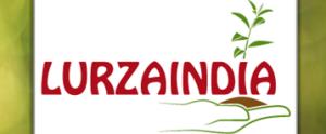 lurzaindia